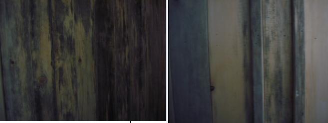 收藏 [其他] 待油漆的木材颜色变了...原来是蓝变现象